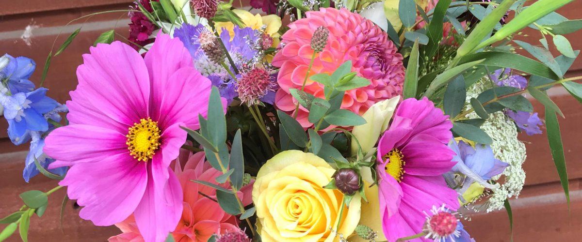 Loanda Flowers